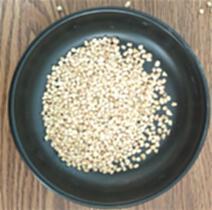 寵物墊料玉米芯生產廠家 食用菌玉米芯報價